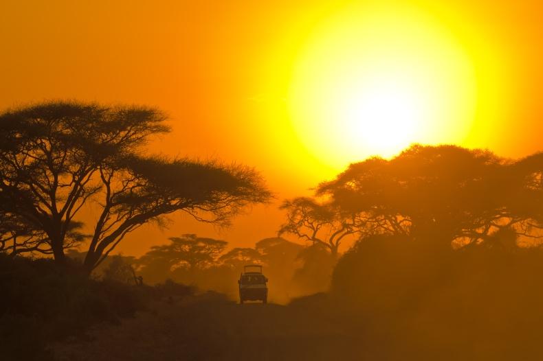 Partir en Afrique